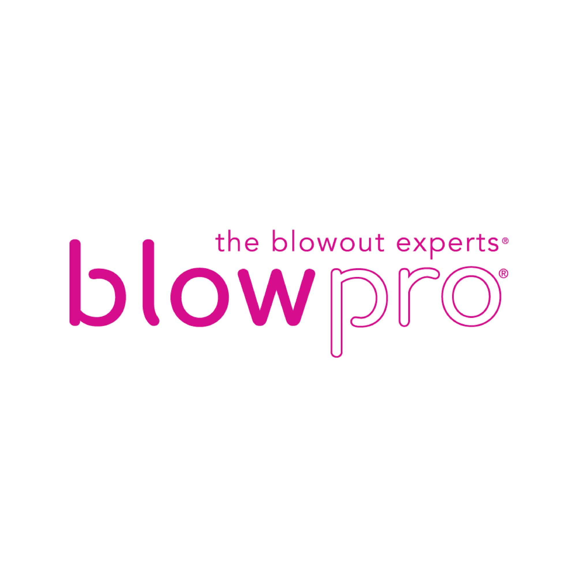 Official Blowpro logo